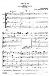 Igraj kolce [Igraj kolo] (Dance the Round Dance) - SATBdiv