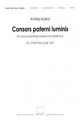 Consors paterni luminis