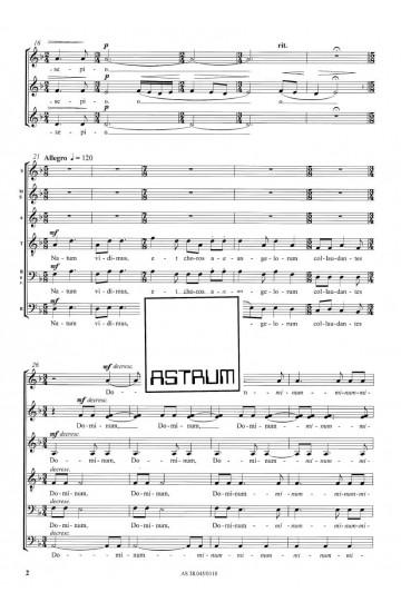 MAGNUM MYSTERIUM - Choir (SATBdiv)